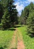 Alpiner Weg stockbilder