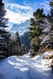 Alpiner Wintertag Lizenzfreies Stockfoto