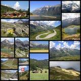 alpines Стоковые Фотографии RF
