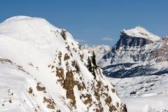 alpines Стоковые Изображения