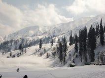 Alpines ricoperto neve Immagini Stock Libere da Diritti