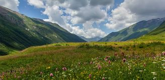 Alpines Tal Stockbilder