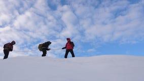 Alpiniści wiążący z arkaną podążają each inny wzdłuż śnieżnej grani drużyna podróżnicy w zimie iść wierzchołek góra zdjęcie wideo