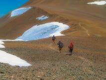 Alpinisme in de Andes stock afbeelding