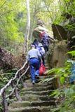 Alpinismo dei turisti alla località di soggiorno della foresta vergine Fotografia Stock Libera da Diritti