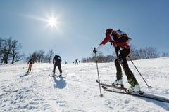 Alpinismo dello sci, corsa verticale: salita dell'alpinista dello sci sugli sci sulla montagna Immagine Stock