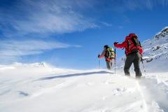 Alpinismo dello sci nella bufera di neve Immagini Stock Libere da Diritti