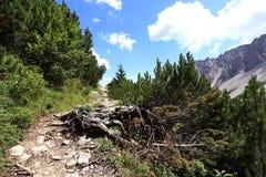 Alpinismo a Hahntennjoch in Austria Fotografie Stock