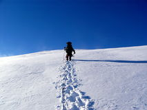 Alpinist on glacier. Alpinist in the snow on glacier, in the step is visible rope Royalty Free Stock Image