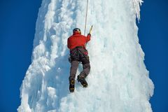 Alpinist man with ice tools axe climbing a large wall of ice. Outdoor Sports Portrait.  royalty free stock photography