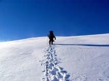 Alpinist na geleira Imagem de Stock Royalty Free