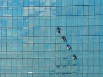 Alpinist vier, der für das Säubern des Gebäudefensterglases klettert Stockbild