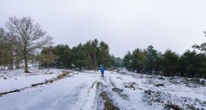 alpinista na śnieżnej górze w zimie zdjęcia stock