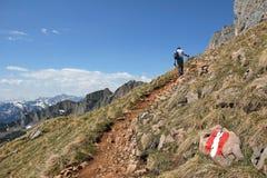 Alpinista su una traccia di escursione nelle alpi austriache Immagini Stock