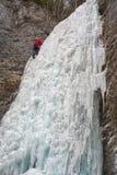 Alpinista sul icefall di Brankovsky, Slovacchia Immagine Stock