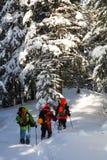 Alpinistas foto de archivo