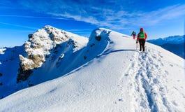 Alpinistas que andam no cume da montanha Fotos de Stock Royalty Free
