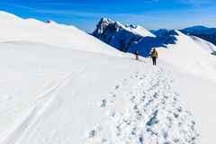 Alpinistas que andam no cume da montanha Imagens de Stock Royalty Free
