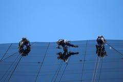 Alpinisti che puliscono facciata di vetro di costruzione Fotografia Stock Libera da Diritti