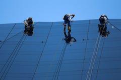 Alpinisti che puliscono facciata di vetro di costruzione Fotografia Stock