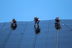 Alpinisti che puliscono facciata di vetro di costruzione Fotografie Stock Libere da Diritti