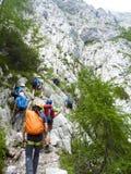 Alpinisti che raggiungono la cima della sommità della montagna delle alpi Fotografia Stock Libera da Diritti