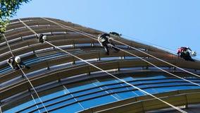 Alpinisti industriali che puliscono grattacielo Immagine Stock Libera da Diritti