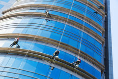 Alpinisti industriali che puliscono grattacielo Fotografia Stock Libera da Diritti