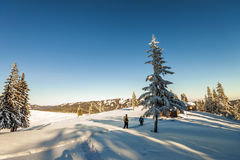 Alpinisti maschii che camminano su un ghiacciaio Alpinisti su uno sno Fotografie Stock