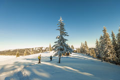 Alpinisti maschii che camminano su un ghiacciaio Alpinisti su uno sno Immagini Stock Libere da Diritti