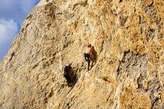 Alpinisti, scalatori Fotografia Stock Libera da Diritti