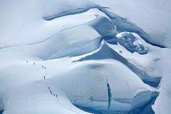 Alpinists on a glacier Royalty Free Stock Image