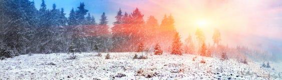 Alpino è il clima Fotografia Stock Libera da Diritti