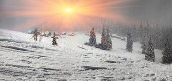Alpino è il clima Fotografia Stock