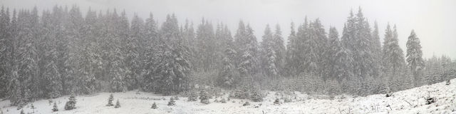 Alpino é o clima Foto de Stock Royalty Free