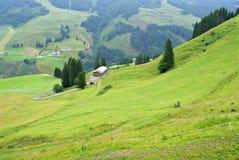 Alpino austriaco di estate Immagini Stock