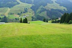 Alpino austriaco di estate Immagine Stock Libera da Diritti