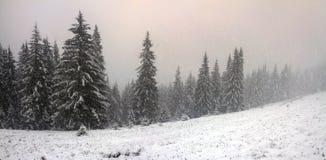 Alpino es el clima Imagen de archivo libre de regalías