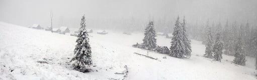 Alpino es el clima Imágenes de archivo libres de regalías
