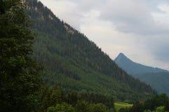 Alpino no verão Fotografia de Stock Royalty Free