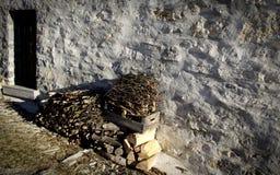 Alpino rurale Fotografia Stock Libera da Diritti