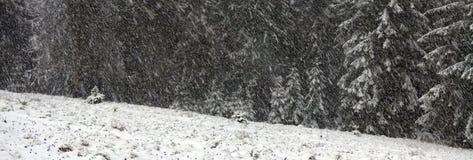 Alpint är klimatet Arkivbild
