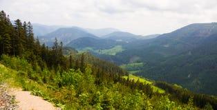 Alpint berg som fotvandrar banan i Österrike Arkivfoto