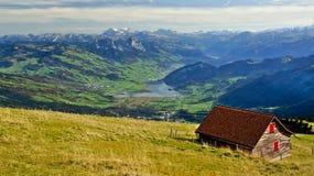 Alpint beta Schweiz Royaltyfri Fotografi