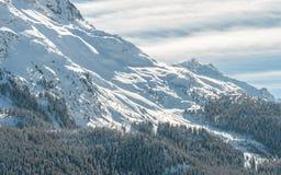 Alpint fjällängberglandskap på St Moritz Arkivfoto