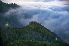 Alpint hav för grönt berg Arkivbild