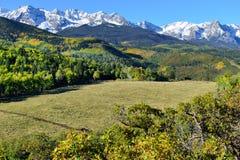 Alpint landskap av Colorado under lövverk Royaltyfri Fotografi