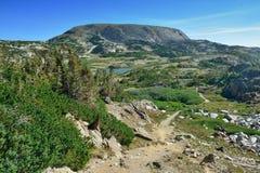 Alpint landskap i medicinpilbågebergen av Wyoming Arkivbild
