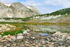 Alpint landskap i medicinpilbågebergen av Wyoming Fotografering för Bildbyråer