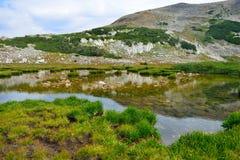 Alpint landskap i medicinpilbågebergen av Wyoming Royaltyfria Bilder